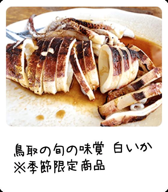 鳥取の旬の味覚 白いか  ※季節限定商品